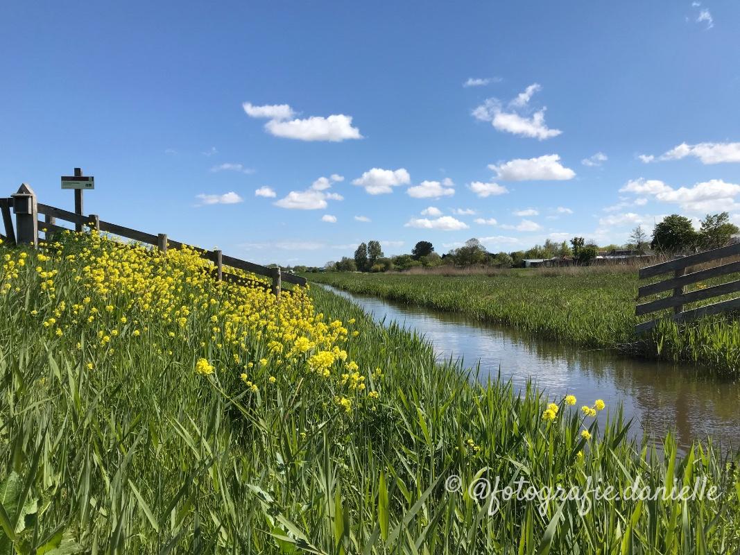 ©fotografie Daniëlle van der Ploeg beautiful nature 4