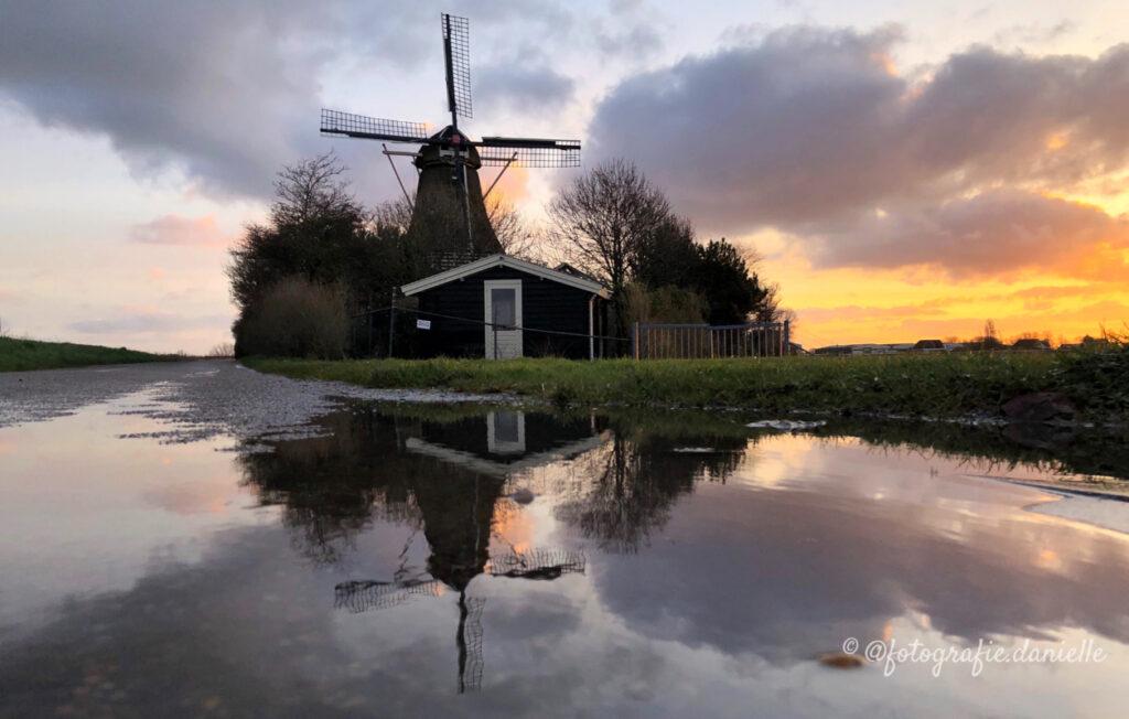 ©fotografie Daniëlle van der Ploeg magic moments 5