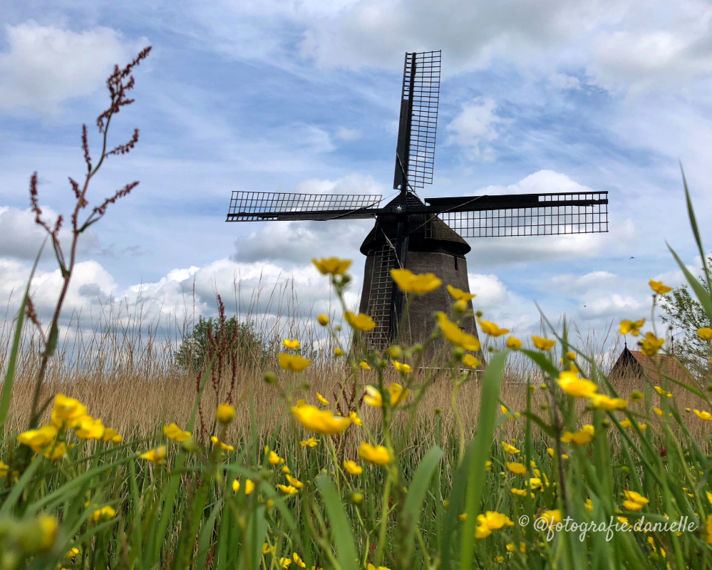 ©fotografie Daniëlle van der Ploeg windmill 8