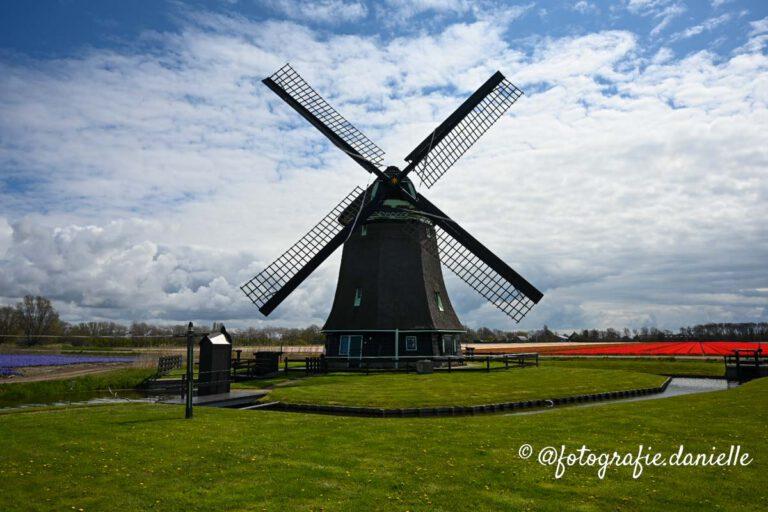 Hollandse molen ©fotografie Daniëlle van der Ploeg-18